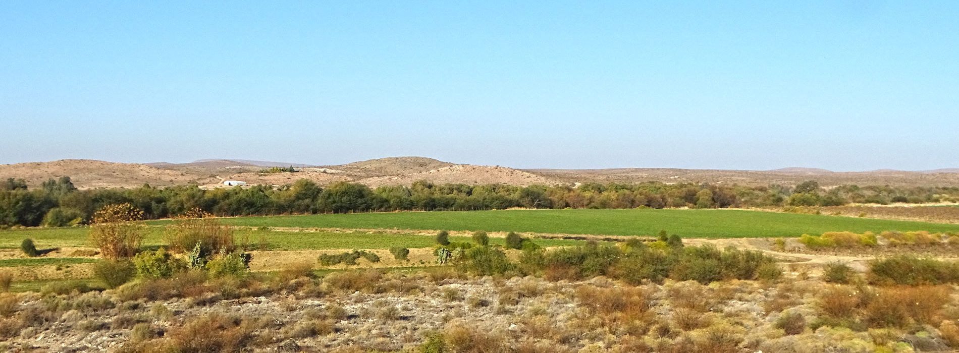 Groen-Kalahari-header
