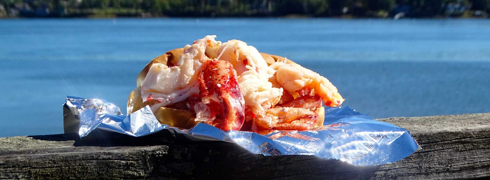 Header-Lobster