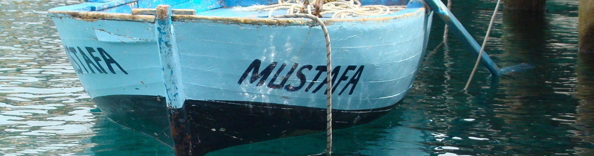Mustafa-header